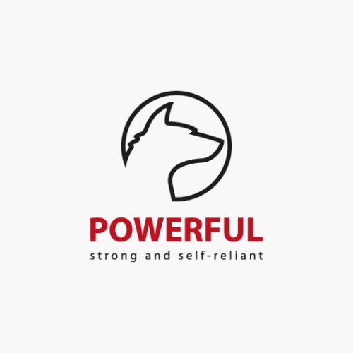 Logo Wolf Power