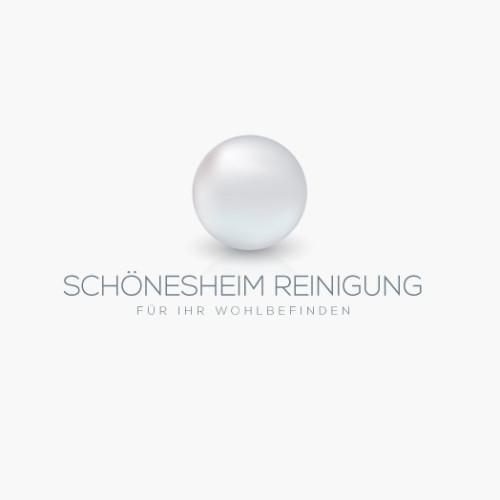 Logo_Reinigung