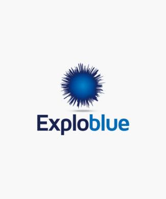 Logo Blaue Explosion Stern Kraft Cooles Logo kaufen LogoShop LogoAtelier.eu